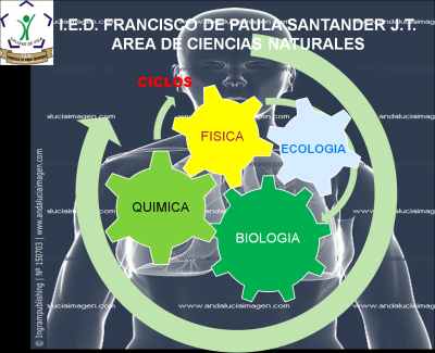 AREA DE CIENCIAS IED FRANCISCO DE PAULA SANTANDER